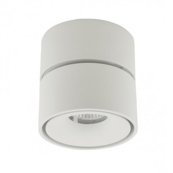 Tommy Downlight White